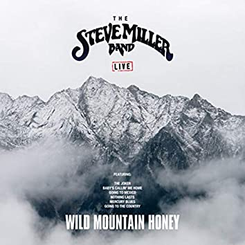 Wild Mountain Honey (Live)