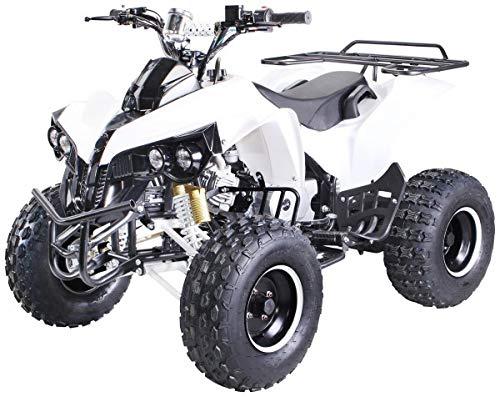 Kinder Quad S-10 125 cc Motor Miniquad Midiquad 125 ccm Warrior (Weiß)
