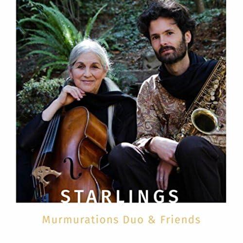 Murmurations Duo