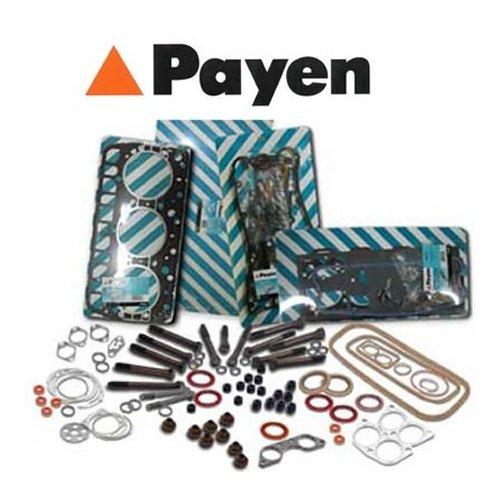 Payen DT260 Kit guarnizioni, testa a cilindro