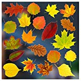 Stickers4–Herbst Dekoration–20 statisch haftende doppelseitige Fenster-Sticker – Fotorealistische Herbstdekoration Fenster