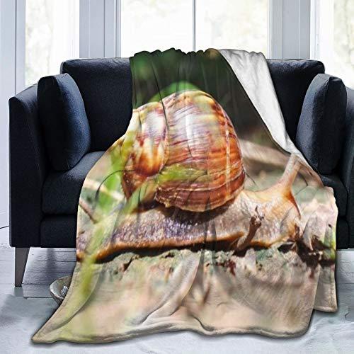 SUHETI Flanell Fleece Soft Throw Decke,Schneckententakel Muschel,die auf Gartentieren kriecht Langsame Wildtier Natur Schleim Moos,für Sofas Sofa Stühle Couch Leicht,warm und gemütlich 153x127cm