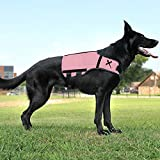 XDOG Weight & Fitness Vest for Dogs - A Weighted Dog Vest Used to Build Muscle, Improve Performance,...