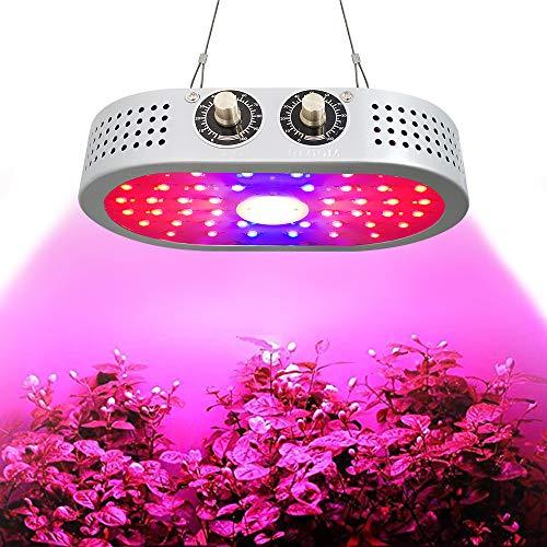 JR. Meet 1000W LED Grow Light per Pianta da Interno, Full Spectrum Illuminazione Regolabile Lampade per Piante Serra per Piante per Semina, Crescita, Fioritura e Fruttificazione