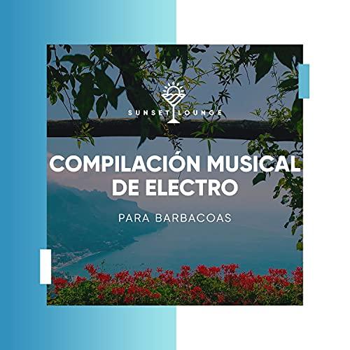 Compilación Musical de Electro para Barbacoas