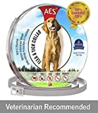 Dog Flea and Tick Control Collar - 8 Months Flea and Tick Control for Dogs - Natural, Herbal, Non-Toxic Dog Flea Treatment - Waterproof Protection and Adjustable Best Flea Collar for Dogs