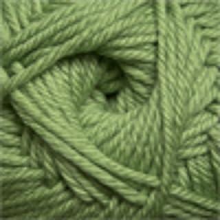 Cascade 220 Superwash Merino Worsted #17 Green Tea
