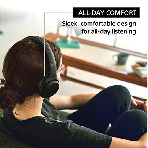 Sony Noise Cancelling Headphones WHXB900N: Wireless Bluetooth Over The Ear Headset with Mic for Phone-Call and Alexa Voice Control - Black (WH-XB900N/B)