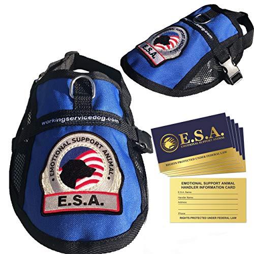 Premium Small Dog ESA Mesh Vest