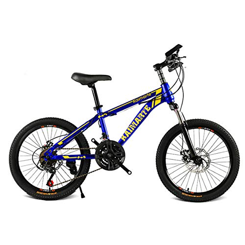 ZPEE Fat Tire Outdoor Mountain Bike Outroad Bicycles,20 Inch Shock Speed Mountain Bike Variable Speed,High Carbon Steel Foldable Bicycle for Adults
