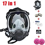 17in 1 Reusable full face Cover,Full Face Respirator Widely Used in Organic Gas,Paint Sprayer, Chemical,Woodworking,Dust Protector