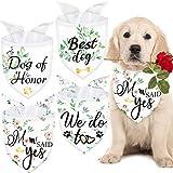 4 Bandanas de Dog of Honor Bandanas de Perros de Boda Baberos de Mascotas de Fiesta Nupcial Prop de Fotos de Boda Lavable Respirable Anuncio de Compromiso de Perro Disfraz Boda de Perros