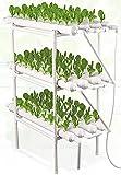 ASY Kit de Cultivo hidropónico, 3 Capas 108 Sitios 12 Tubo Sin Suelo Sitio Hidropónico Sitio, Sistema de Crecimiento de hidroponía para Verduras, Bayas, Flores, Hierba