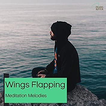 Wings Flapping - Meditation Melodies