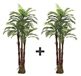 AMERIQUE Pair Gorgeous 6 Feet Triple Tropical Palm Artificial Plant Tree with Standable Trunk, Real Touch Technology, with UV Protection, Green, 2