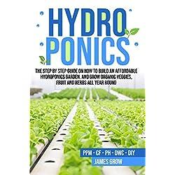 水培:关于如何建造经济实惠的水栽法花园的步骤指南
