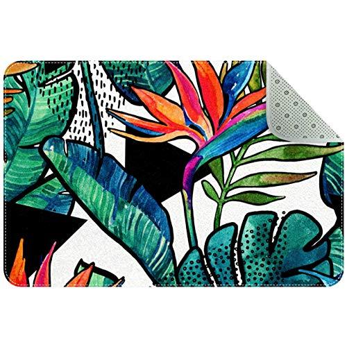 MEITD Felpudo para puerta de invierno, resistente, resistente, antideslizante, para entrada de dibujos animados, hojas y flores
