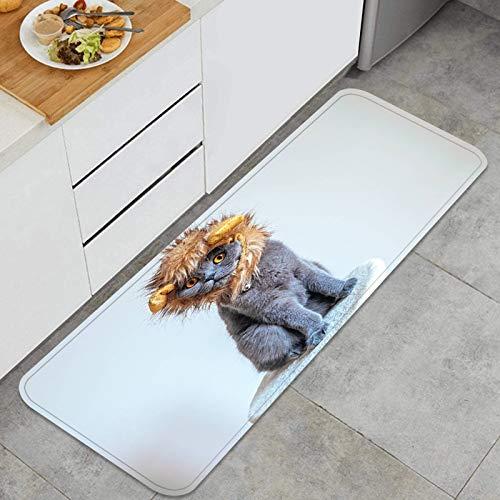 AndrewTop Cocina Antideslizante Alfombras de pie Lindo Gato Disfrazado de len Decoracin de Piso Confortables para el hogar, Fregadero, lavandera-120cm x 45cm