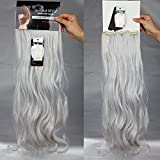 S-noilite® 24' (60 cm) extensiones de cabello cabeza completa clip en extensiones de pelo Ombre ondulado rizado - Gris plateado
