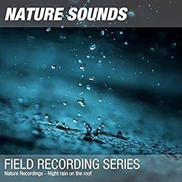 Nature Recordings - Night rain on the roof