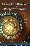 Carmelite Wisdom and Prophetic Hope: Treasures Both New and Old (Carmelite Studies)