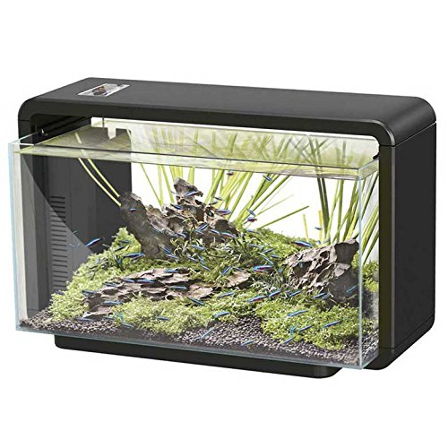 Superfish 545645/1638 SF LED Aquarienset Home 25 schwarz