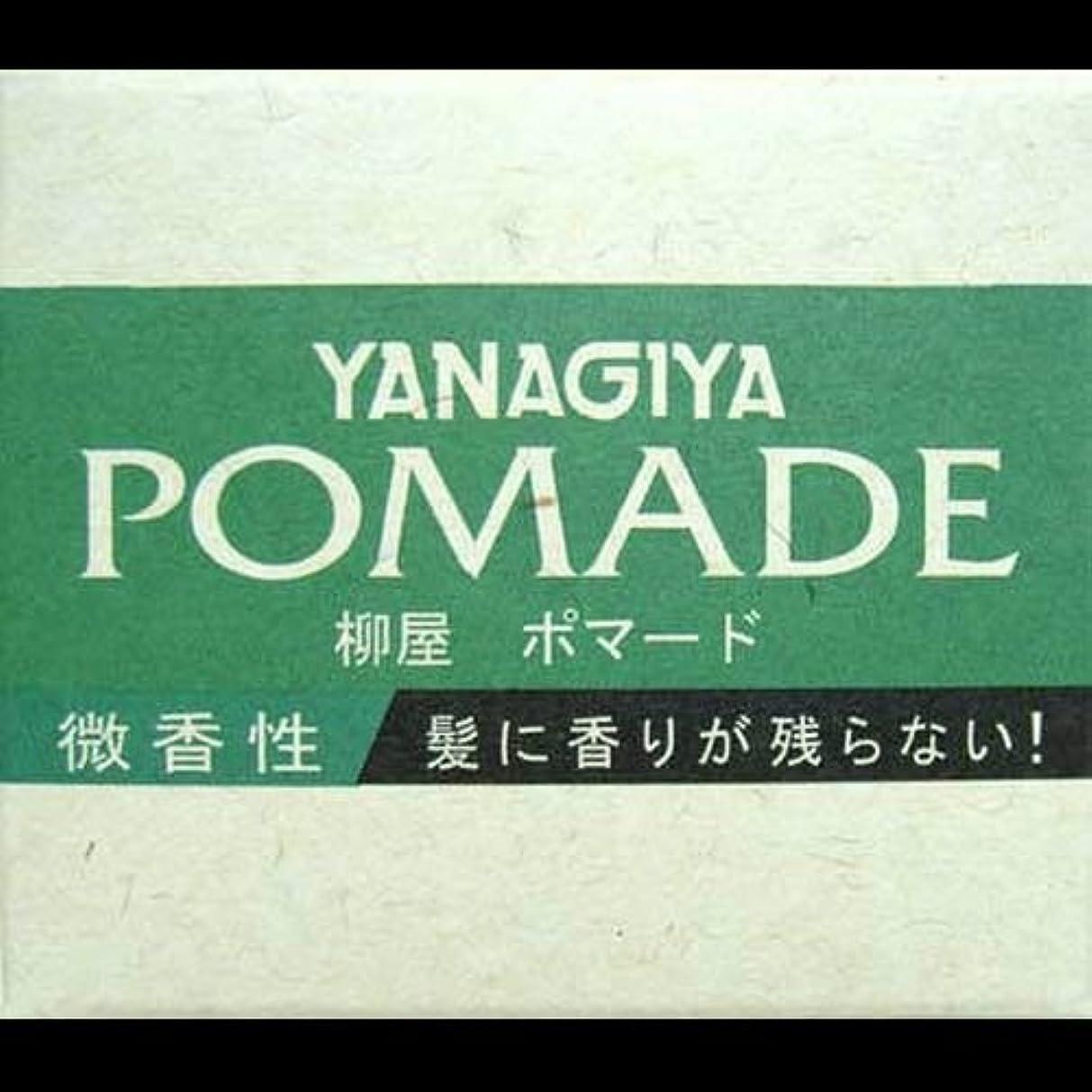 告発者法王フレキシブル【まとめ買い】柳屋 ポマード微香性120g ×2セット