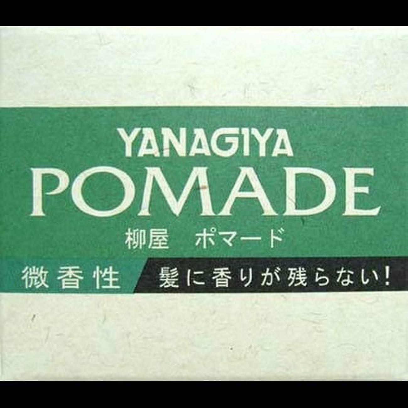 辞書分数無謀【まとめ買い】柳屋 ポマード微香性120g ×2セット