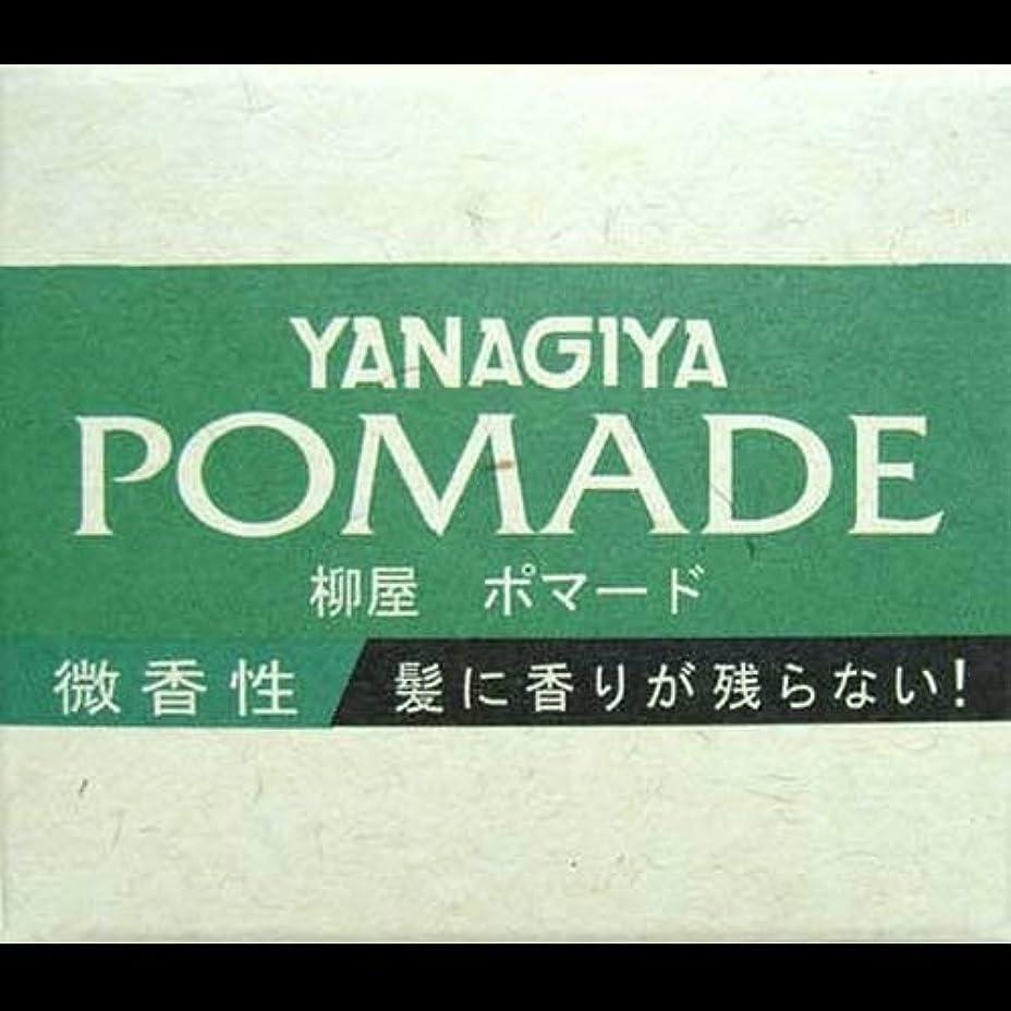 セーブ公園複雑でない【まとめ買い】柳屋 ポマード微香性120g ×2セット