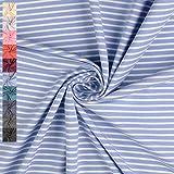 Jersey Stoff Elias, gestreift 5mm und 2,5mm, hellblau/weiß