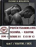 'CLaHMoL' Homosexuell Geschichten Reihe Privatsammlung Schwul-Erotik Serie 01 (13 in 1)