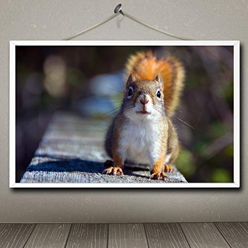 N / A Pintura sin Marco Cute Squirrel Animal Series Real Oil Painting Art Poster Home Decoration48X76cm