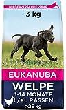 Eukanuba Welpenfutter mit frischem Huhn für große Rassen, Premium Trockenfutter für Welpen, 3 kg