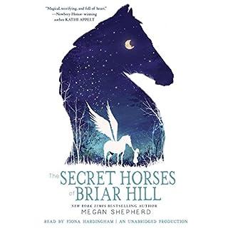 The Secret Horses of Briar Hill cover art