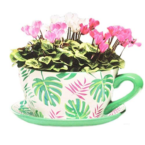 Giant Ceramic Vintage Tea Cup Saucer Planter Plant Pot Holder Garden Home Flower (Tropical Green Leaves)
