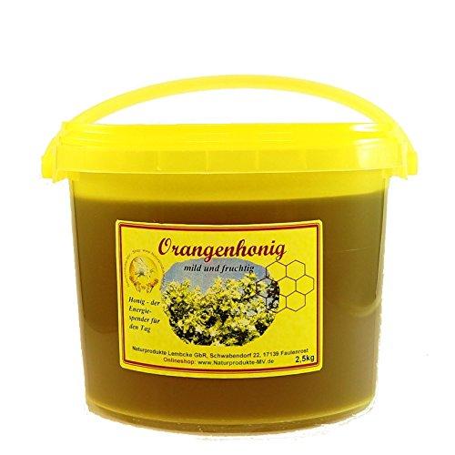 Orangenhonig (2,5kg Eimer) Orangen Honig