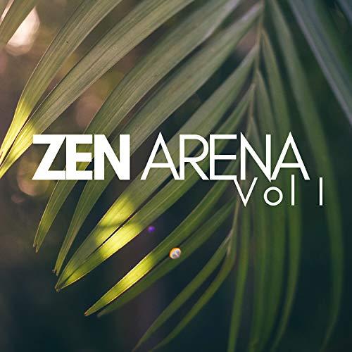 Zen Arena