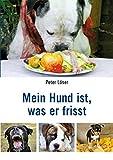 Mein Hund ist, was er frisst: Was Sie über ganzheitliche Hundeernährung wissen sollten