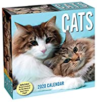 Cats 2020 Day-to-Day Calendar