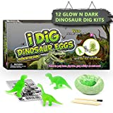 Nachtleuchtender Dinosaurier Ausgrabungsset für Kinder Dino Ei Toy Ausgraben Dino