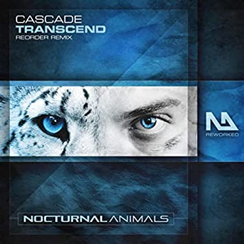 Transcend (ReOrder Remix)