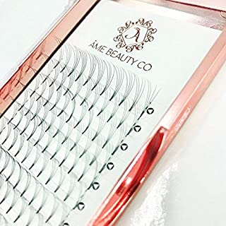 Ame Beauty – Pre Fanned Russian Volume Individual Cluster Eyelash Extension Tray | 0.07 Thickness | D Curl (5D 12MM) | Natural Silk Semi Permanent Rootless Eyelashes for Professional Beauty Salon
