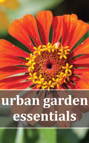 Urban Garden Essentials: Growing Bountiful Gardens in Plante