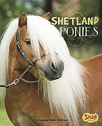 shetland pony book