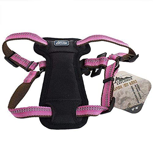 Coastal Pet Products DCP36445COG K9 Explorer 5/8-Inch Harness for Dogs, Small, Orange