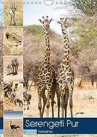 Serengeti Pur - Tansania (Wandkalender 2022 DIN A4 hoch): Wilde Tierwelt der Serengeti (Monatskalender, 14 Seiten )