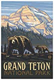 Grand Teton National Park Rockies Grizzly Bears Giclee Art Print Poster from Original Travel Artwork by Artist Paul A. Lanquist 12' x 18'
