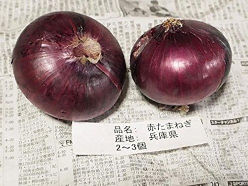 兵庫県産 赤玉ねぎ 秀品・Lサイズ 4〜5玉入り/約1kg
