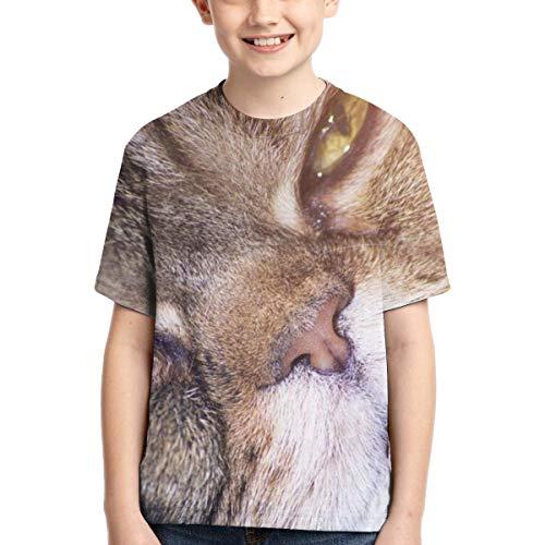Camisetas para niños Cute Cat (6) Camisetas para niños Camisetas de Golf de Manga Corta de Verano de Secado rápido