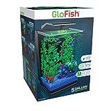 GloFish Aquarium Kit 5...